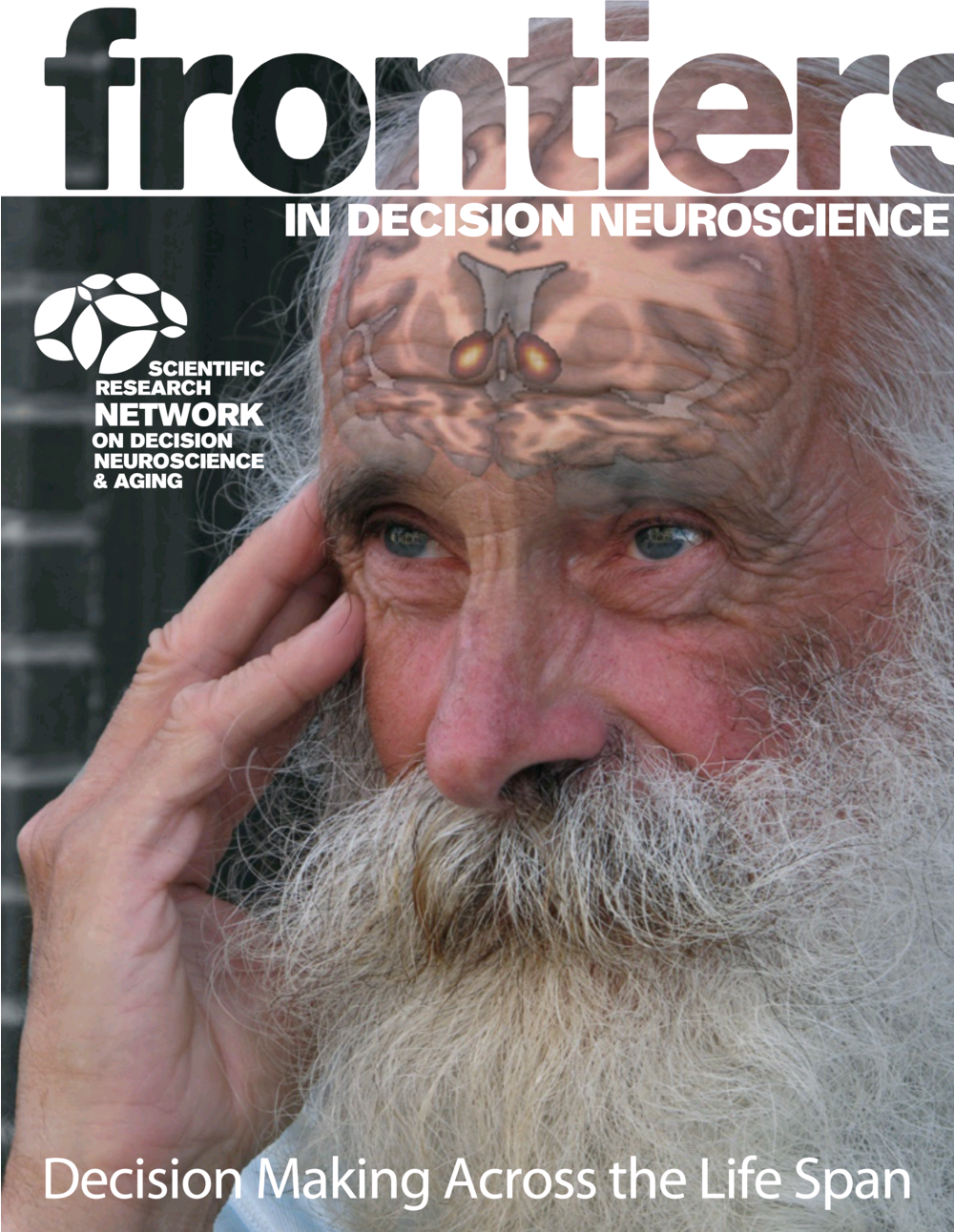 cover_frontiers-in-decision-neuroscience.png